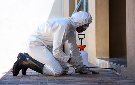 attic restoration services